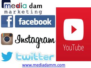 Buy Indian Twitter Followers(9899756694) at affordable price noida india- mediadamm.com