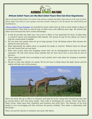 African Safari Tours are the Best Safari Tours One Can Ever Experience