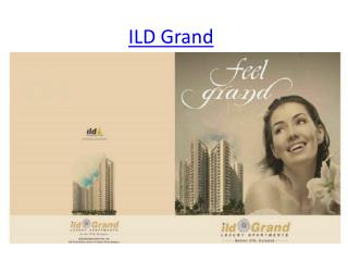 Ild grand in sector 37 c gurgaon