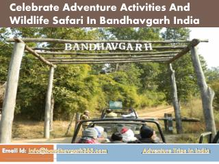Celebrate Adventure Activities In Bandhavgarh India