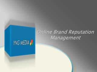 Online Brand Reputation Management