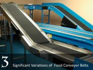 Major Variants of Food Conveyor Belts in UAE