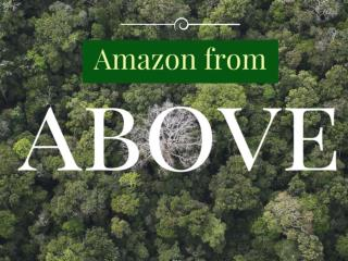 Amazon from above