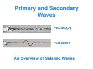 Primary and Secondary Waves