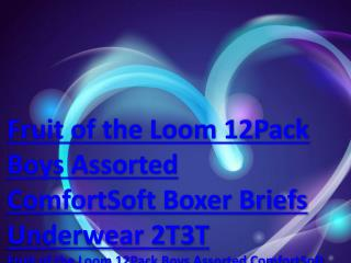 Fruit of the Loom 12Pack Boys Assorted ComfortSoft Boxer Briefs Underwear 2T3T