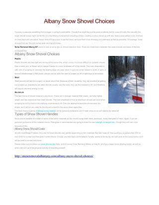 Albany Snow Shovel Choices