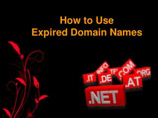 How to Use Expired Domains Names