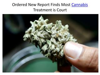 Ordered New Report Finds Most Cannabis Treatment is