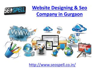 Website Designing & Seo Company in Gurgaon