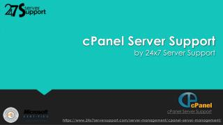 Cpanel server support