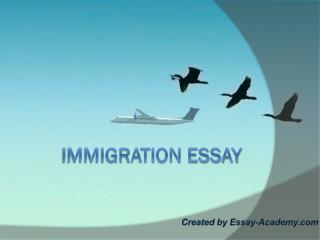 Immigration Essay