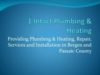 1 Intact Plaumbing & Heating