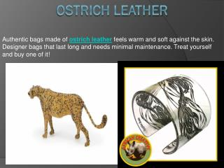 Ostrich leather, African fertility doll, South african gifts
