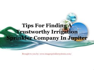 Tips For Finding A Trustworthy Irrigation Sprinkler Company In Jupiter