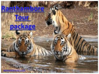 ranthambore tour package