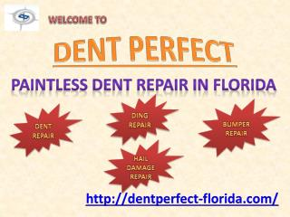 Dent Wizard in Florida