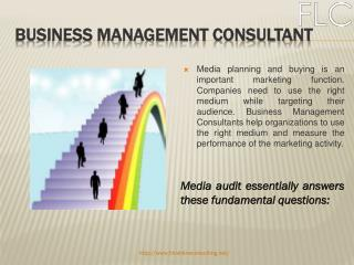 Business Management Consultant