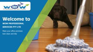 Carpet Cleaners in Canberra | Wow Professional Services Pty Ltd