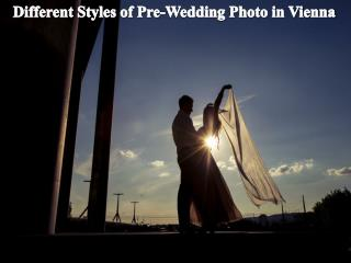 Different Styles of Pre-Wedding Photo in Vienna