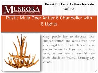 Beautiful Faux Antlers for Sale Online