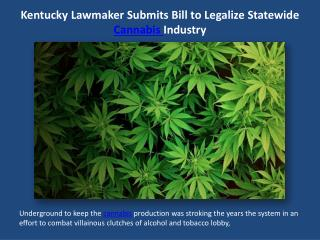 Kentucky Lawmaker Submits Bill to Legalize Statewide Cannabis.