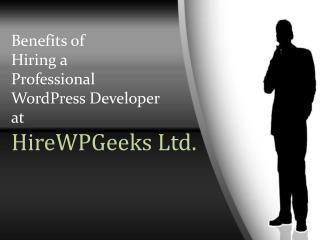 Benefits of Hiring a Professional WordPress Developer at HireWPGeeks Ltd.