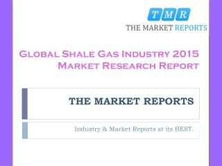 Global Price, Cost and Gross of Shale Gas 2010-2015 Market Forecast Report