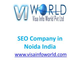 SEO services(9899756694)  at lowest price in  ncr india-visainfoworld.com