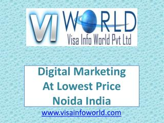 lowest price(9899756694) internet marketing in noida-visainfoworld.com