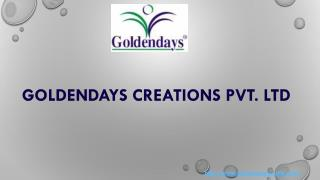 Promotional Premium Trophies Exporter in India | Goldendays