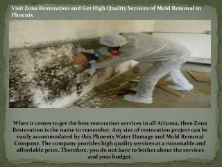 Mold Removal in Phoenix