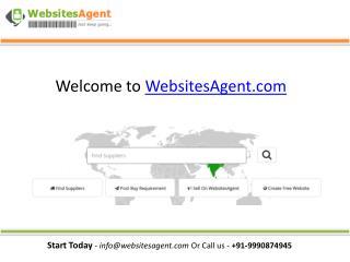 About WebsitesAgent