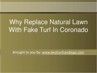 Why Replace Natural Lawn With Fake Turf In Coronado