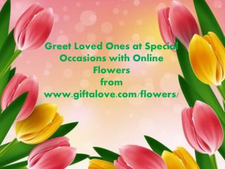 Greet Loved Ones at Special Occasions with Online Flowers from Giftalove.com!!