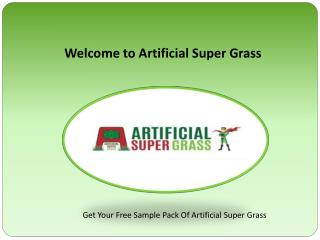Leading Highest Quality Artificial Grass Supplier