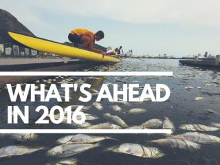 What to expect in 2016
