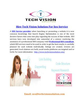 Hire Tech Vision Solution For Seo Service