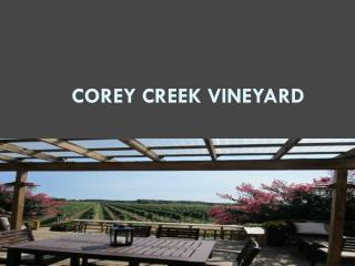 Corey Creek Vineyard