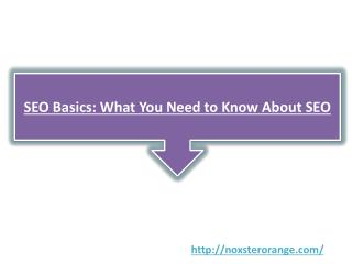 SEO Basics: What You Need to Know About SEO