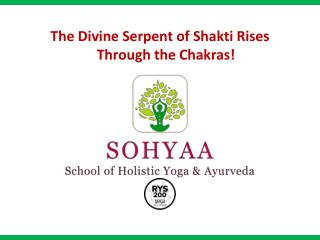 The Divine Serpent of Shakti Rises Through the Chakras!