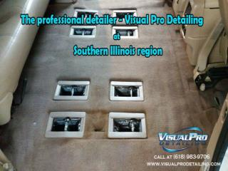 The professional detailer - Visual Pro Detailing