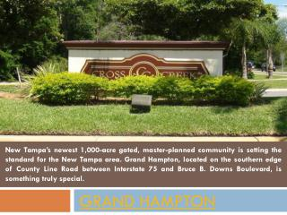 Homes For Sale in Grand Hampton