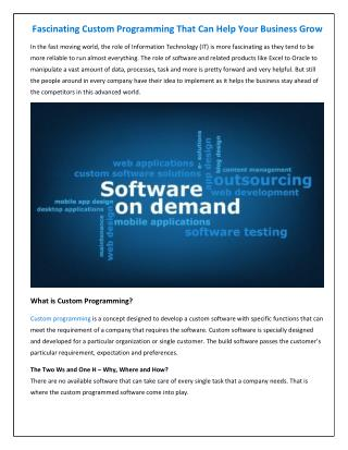 Fascinating Custom Programming that can help your business grow