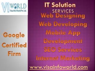best web development solutions(9899756694) in Noida-visainfoworld.com