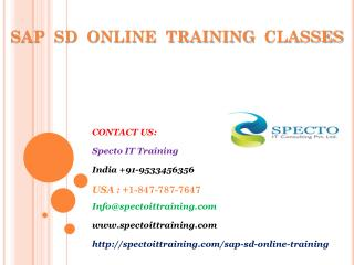 sap sd online training in usa,uk,australia,canada