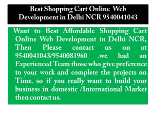 Affordable Shopping Cart Online  Web Development in Delhi NCR 9540041043