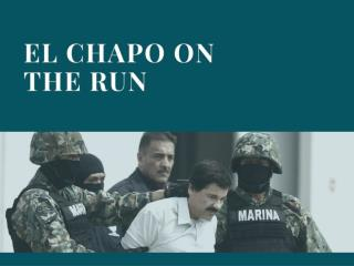 El Chapo on the run