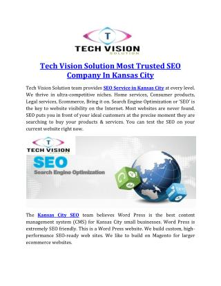 Tech Vision Solution Most Trusted SEO Company In Kansas City