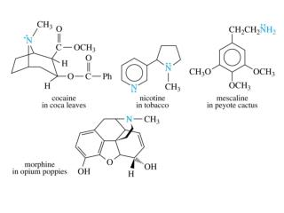 Catecholamines All synthesized from tyrosine (Amino Acid) Dopamine, epinephrine, norepinephrine A deficiency in  dopamin