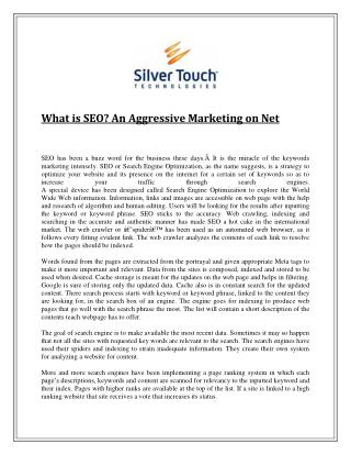 What is SEO? An Aggressive Marketing on Net